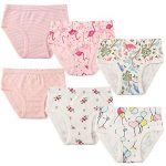 6 Paquet Petite Fille sous-vêtements Coton Fit Âge 1-7, Fille de Bébé Bambin Culottes de la marque Cotton Talk image 1 produit
