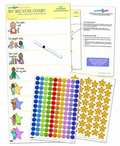 My Big Star Tableau de récompense (2yrs Up) Gagnant du Prix, des Résultats superbes, gérer, développement avec renforcement positif pour bébé (63,5x 27,9cm) de la marque Inconnu image 0 produit