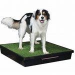 PetSafe - Toilettes Portables pour Chiens à Pelouse Synthétique - pour Chiens et Animaux Domestiques Pet Loo (L) Grand Format de la marque PetSafe image 2 produit